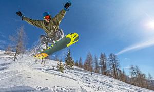 滑雪人物与斜坡上的树摄影高清图片
