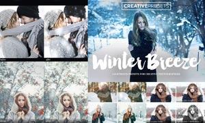 人像照片冬季冷色和下雪效果LR预设