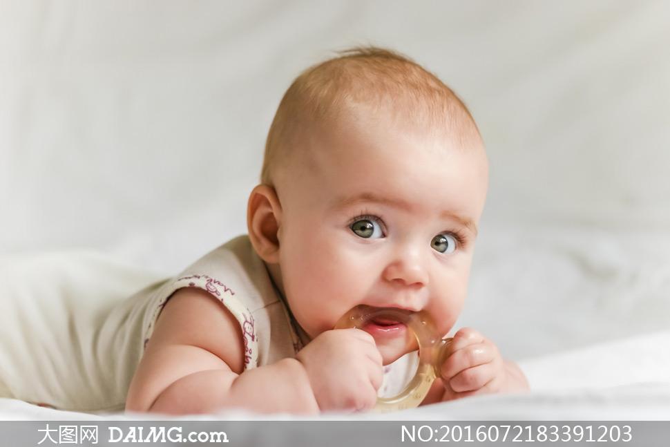 在咬着牙胶的可爱宝宝摄影高清图片