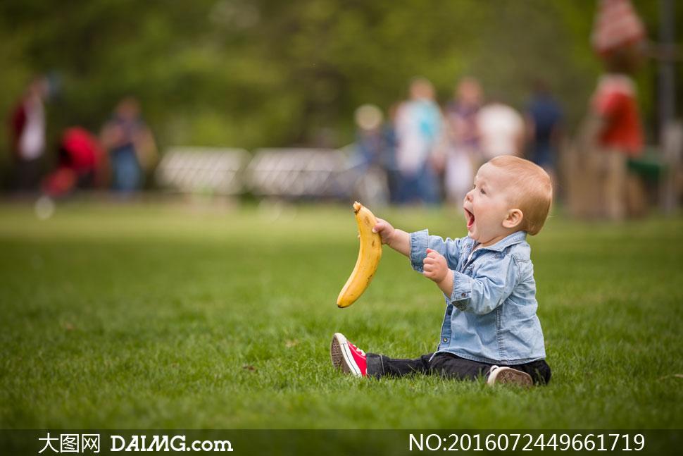 在草坪上玩耍的小男孩摄影高清图片