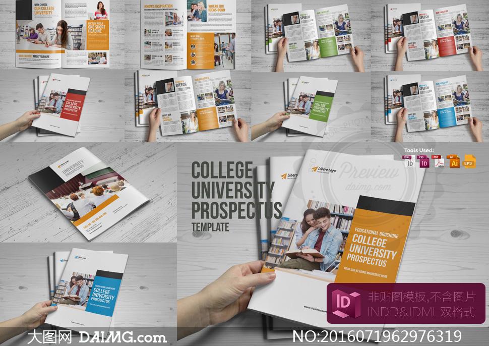 大学招生章程手册版式设计矢量模板