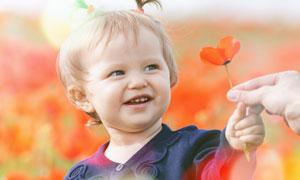 手里拿着一朵小花的小女孩高清图片