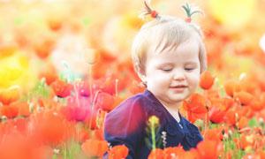 红色花丛中的可爱女孩摄影高清图片