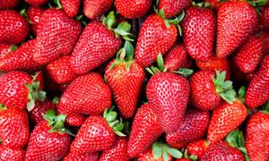 色泽鲜艳的大草莓特写摄影高清图片