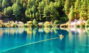 湖面风光与在山坡上的树林高清图片