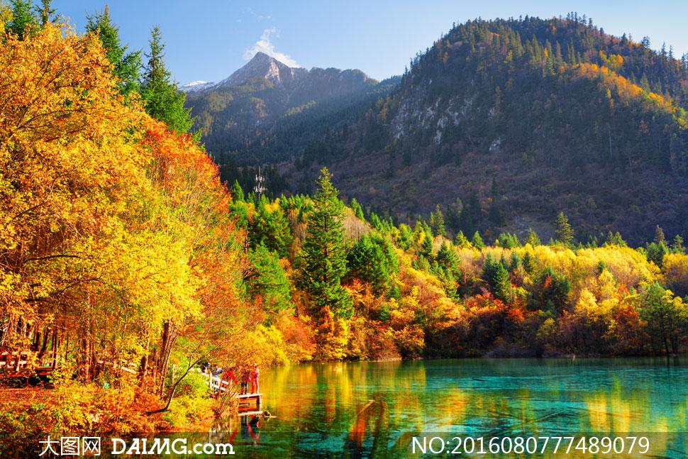 秋天树木青山绿水风光摄影高清图片