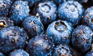 带水珠的新鲜蓝莓微距摄影高清图片