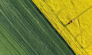庄稼地农作物鸟瞰视角摄影高清图片