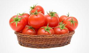 放在篮子里的番茄特写摄影高清图片