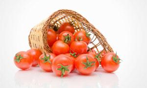 从篮子倒出来的西红柿摄影高清图片