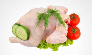 黄瓜片西红柿与鸡肉等摄影高清图片
