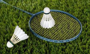 放在草地上的羽毛球等摄影高清图片