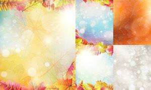 朦胧光斑装饰的树叶背景等矢量素材