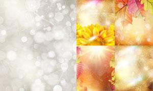 花朵树叶与朦胧光斑元素等矢量素材