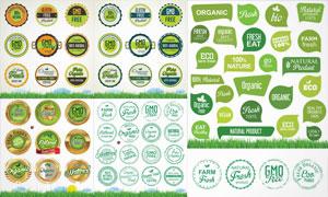 綠色健康產品標簽設計元素矢量素材