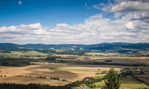 蓝天白云下的田园农田摄影图片