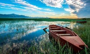 西溪湿地黄昏美景摄影图片