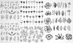 手绘风黑白花朵效果图案矢量素材V1