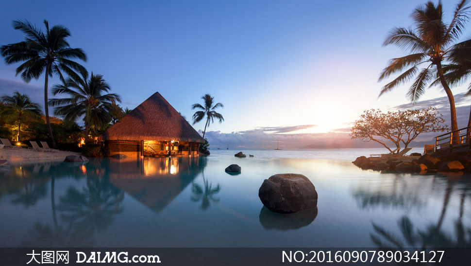 海边的房子与椰树风光摄影高清图片
