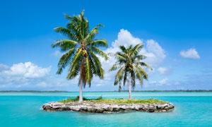 海上的椰树岛自然风光摄影高清图片