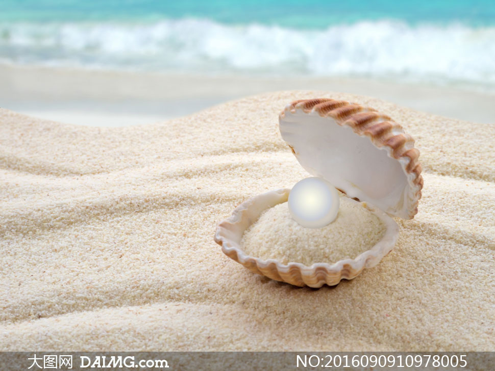 蚌壳里的沙子与珍珠等摄影高清图片