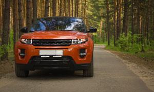 在樹林間小路上的汽車攝影高清圖片