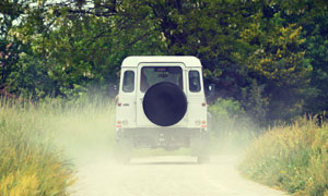 草叢吉普車與茂密樹林攝影高清圖片