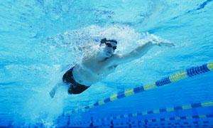 在泳池里自由泳的男子摄影高清图片