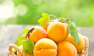 在编织篮里的新鲜黄桃摄影高清图片