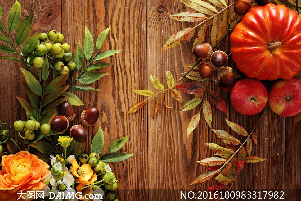 鲜花南瓜与秋天树叶等摄影高清图片