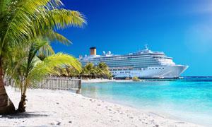 沙滩椰树与海上的豪华游轮高清图片