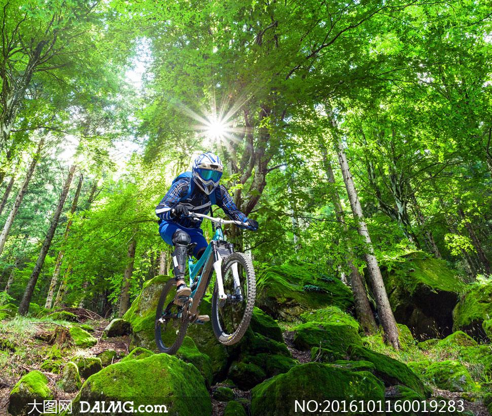 风景风光树木树林大树茂密茂盛石头岩石青苔车手自行车山地车头盔护具