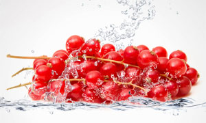 水花与红色蔓越莓特写摄影高清图片