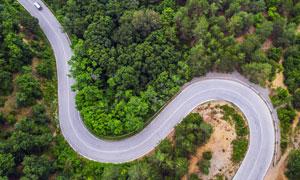 树林中蜿蜒通过的公路摄影高清图片