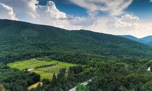 道路与茂密的树林鸟瞰摄影高清图片