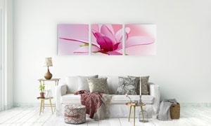 简约风格粉红色花朵无框画高清图片