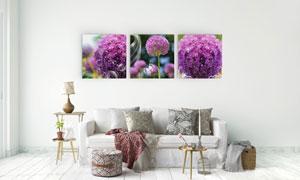 星光装饰的紫色花朵无框画高清图片