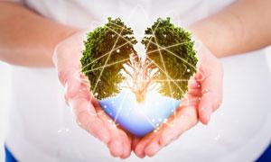 光线环绕的心形树创意设计高清图片