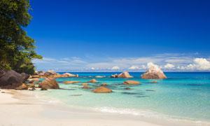 蓝天白云与海边的石头摄影高清图片