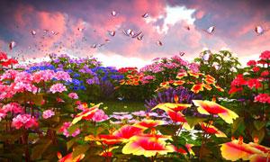 流连于花草丛中的蝴蝶创意高清图片