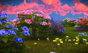 草地上生长的鲜艳花卉植物高清图片