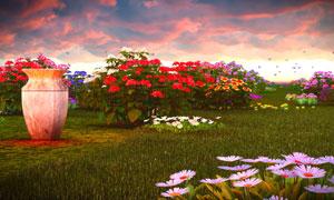 鲜艳花卉植物与多云的天空高清图片