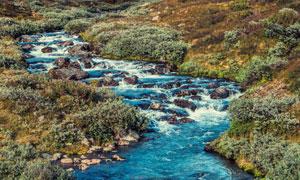山坡上顺势而下的溪流摄影高清图片