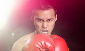 戴着红手套的拳击男子摄影高清图片