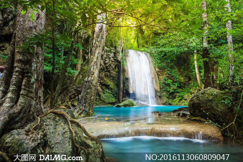 高清摄影大图图片素材自然风景风光树木树林大树茂密茂盛潭水湖水瀑布