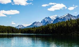 雪山下的山林和湖泊摄影图片