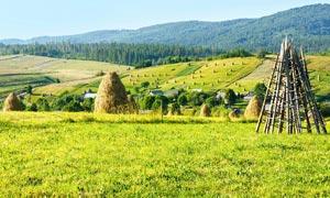 山坡山脚下的绿色草地摄影图片