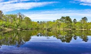 蓝天下的湖泊倒影和树林摄影图片