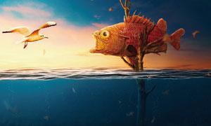 创意的鱼和鸟争斗场景PS教程素材