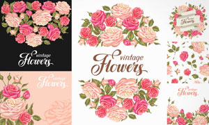 绿叶装饰的玫瑰花背景设计矢量素材